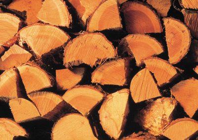 Thomas Wolfs Holz